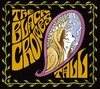 The Black Crowes: The Tall Sessions (2006)