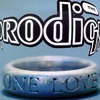 The Prodigy: One Love (maxi) (1993)