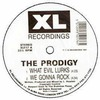 The Prodigy: What Evil Lurks (ep) (1991)